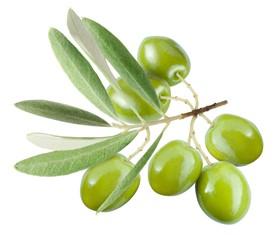 378293-olive