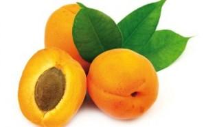 abricot-13