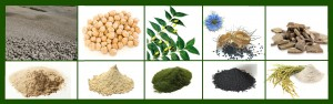 clay mask ingredients2